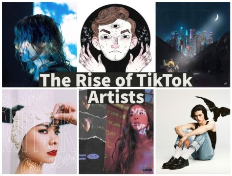 How TikTok Has Changed the Music Industry